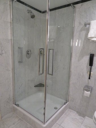Hilton Brussels Grand Place: Interesting shower stall. Both glass sides can be opened. Leakage is common.