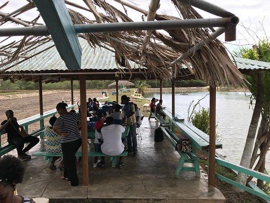 Little Hobby Hut Safari & Fish Farm: One of the main eating docks