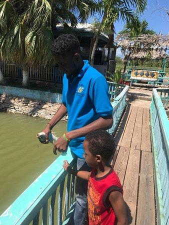 Little Hobby Hut Safari & Fish Farm: Fishing
