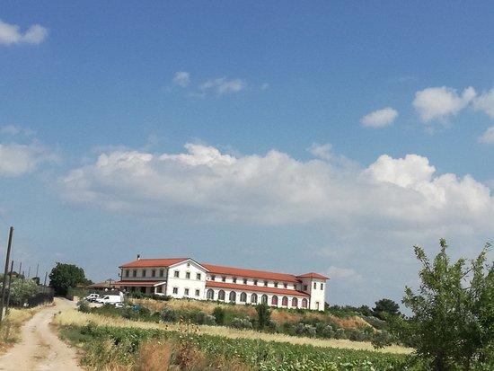 Wine Museum Tzivani