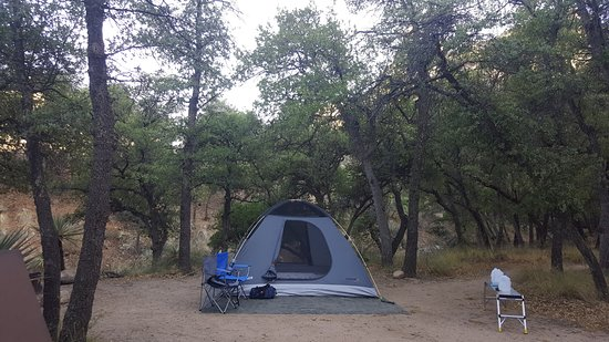 Pearce, AZ: Campsite...located on dry riverbed, but during rainy season...would be nice flowing river.