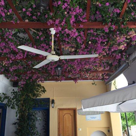To Steki: Ansichten von der Terrasse