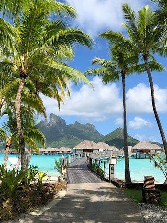 Khu nghỉ dưỡng bốn mùa Resort Bora Bora: One of the best photo spots on the resort!