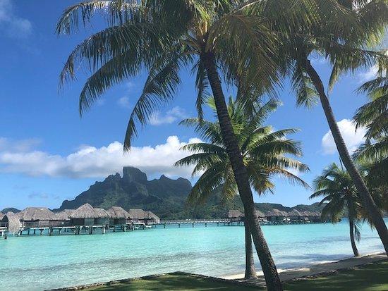 Khu nghỉ dưỡng bốn mùa Resort Bora Bora: View near the beach