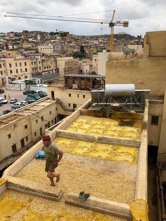 Moulay Abdellah Quarter: yellow tannery