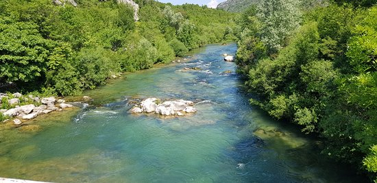 Zlatna Rijeka: Cetina river