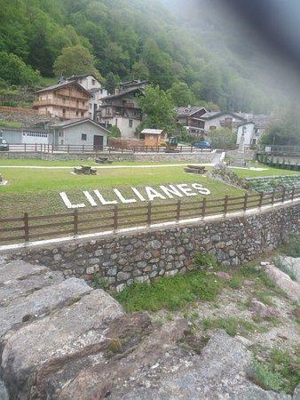 Lillianes Photo