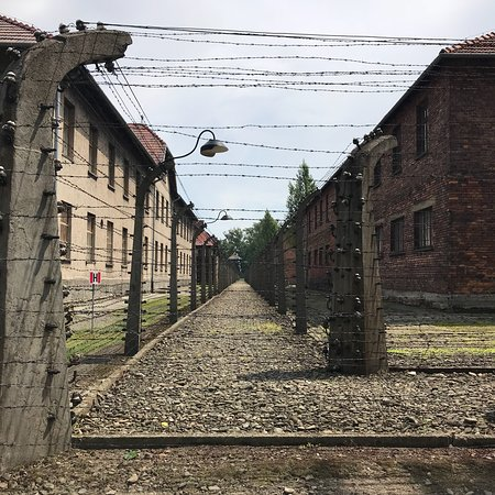 从克拉科夫出发,奥斯维辛集中营和维利奇卡盐矿一日游,提供午餐照片