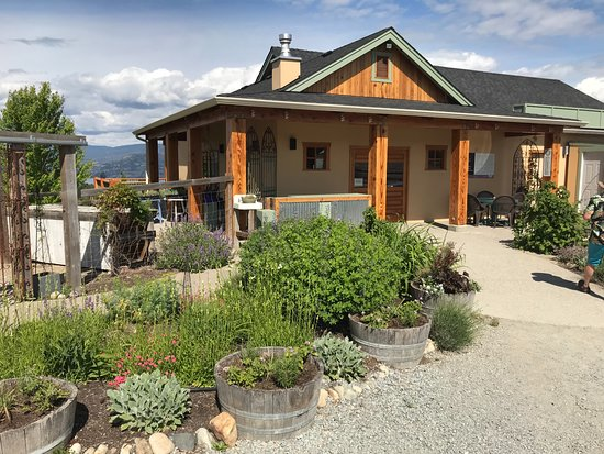 Okanagan Lavender & Herb Farm: Front of farm