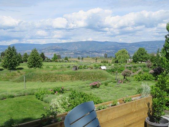 Okanagan Lavender & Herb Farm: Views from deck