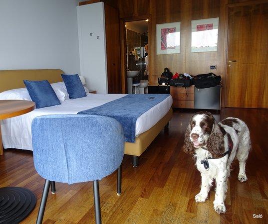 Salo' du Parc Hotel: Værelse 301