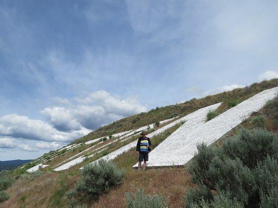 Munson Mountain : The big sign - very steep, so no climbing!