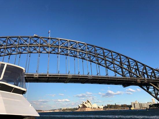Sydney Harbour Specialists: Opera house and Harbor bridge