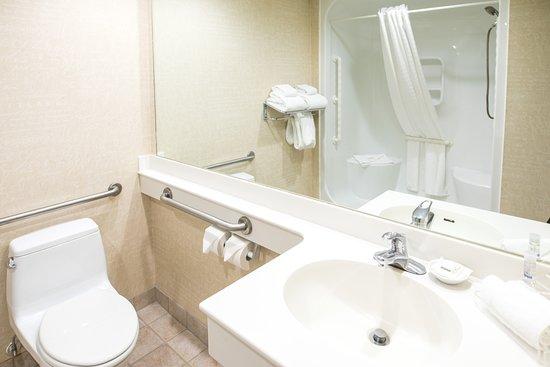 إجزكيوتيف رويال إن هوتل آند كونفرنس سنتر: Wheelchair Accessible Room Bathroom