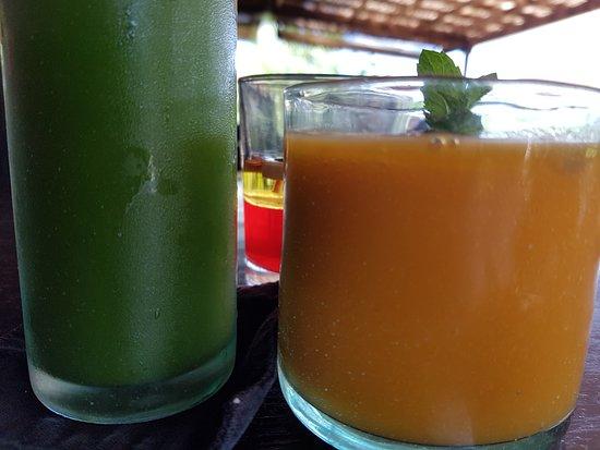 Moksa Plant-based Cuisine & Permaculture Garden: Jus