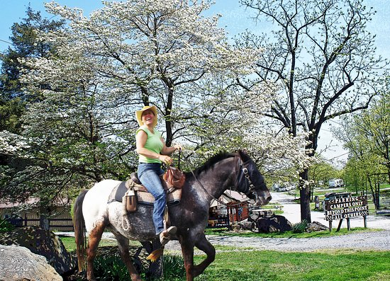 Artillery Ridge Campground : Horse camping with direct access to the Gettysburg Horse Trails at Artillery Ridge Camping Resor
