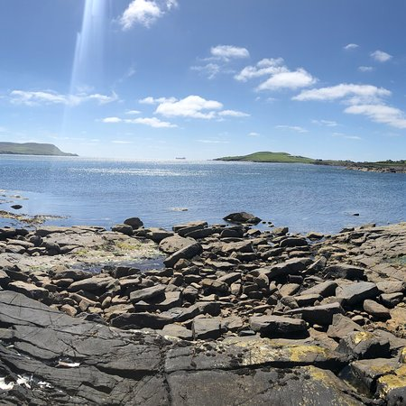 Bressay Wildlife Cruises: Shetland