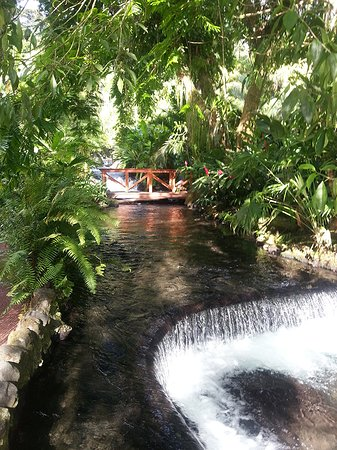 Tabacon Hot Springs: Hot spring waterfall