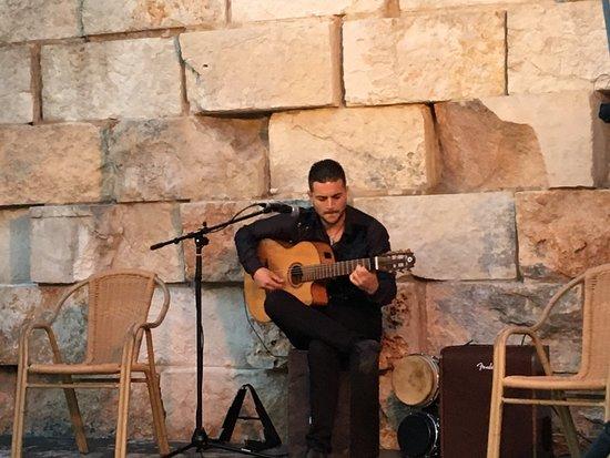 Aparthotel Ona Aucanada : Spanish Guitar