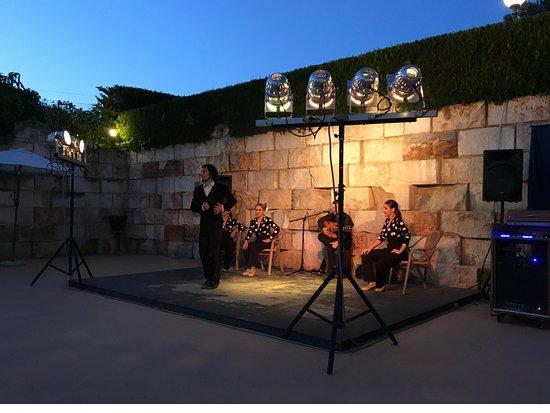 Aparthotel Ona Aucanada: Flamenco show