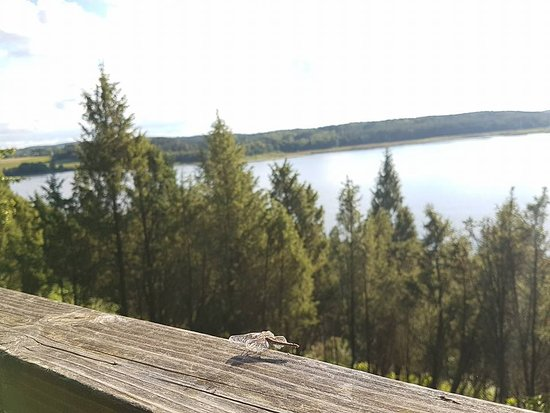 MG Voyages - Day Tours: Juniper Valley most beautifull walking trail in Lithuania
