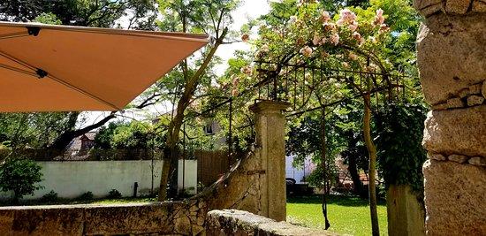 Casa dos Guindais Picture