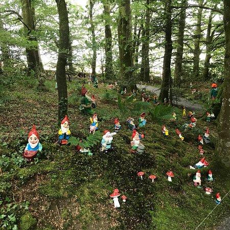 The Gnome Reserve & Wild Flower Garden: photo0.jpg