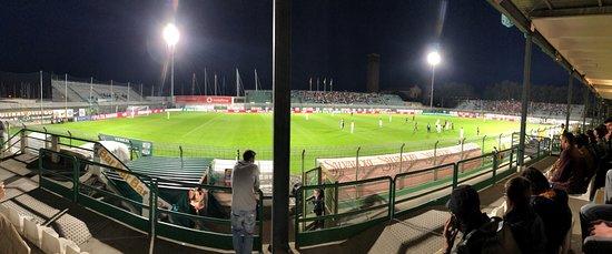 Stadio Pier Luigi Penzo panoramic