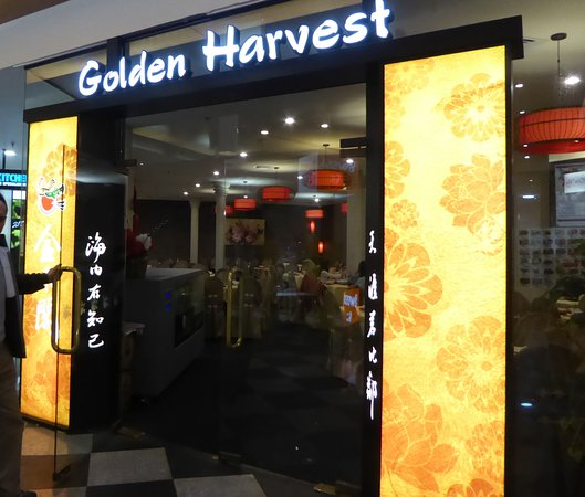Golden Harvest Restaurant照片