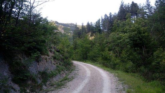 산 고덴조 사진