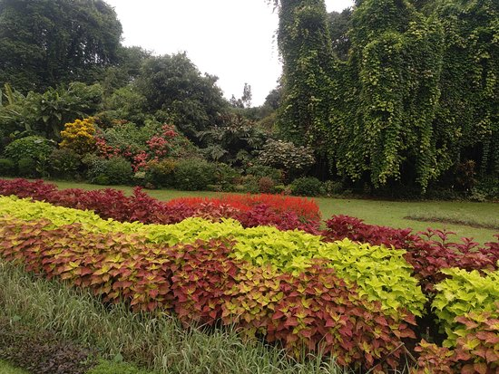 Royal Botanical Gardens: Wunderschön