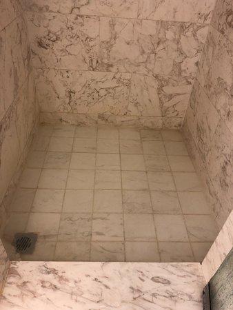 โรงแรมริทซ์ คาร์ลตัน กัวลาลัมเปอร์: clogged bathroom