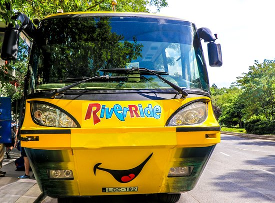 Budapest Sightseeing Tour by Land and Water: Floating bus Budapest