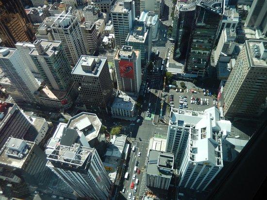 สกายทาวเวอร์: Way up high!