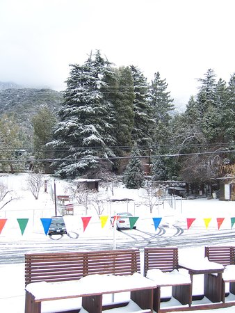 Oak Glen, CA: Seasonal dustings of snow are quite common at the ranch's elevation, approximately 4500 feet.