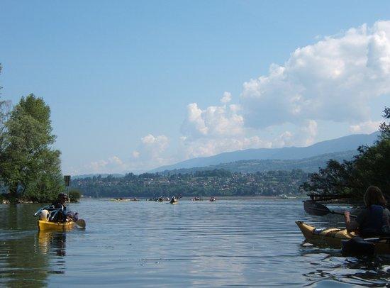 Chambéry-Le Bourget Canoë-Kayak: L'entrée du lac par la Leysse juste en dessous de notre base!