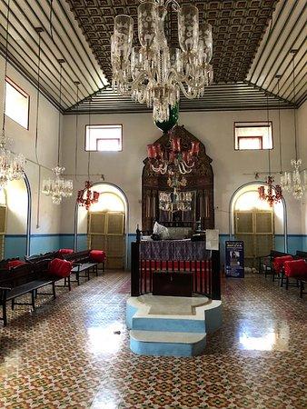 Kochi Tour Guide