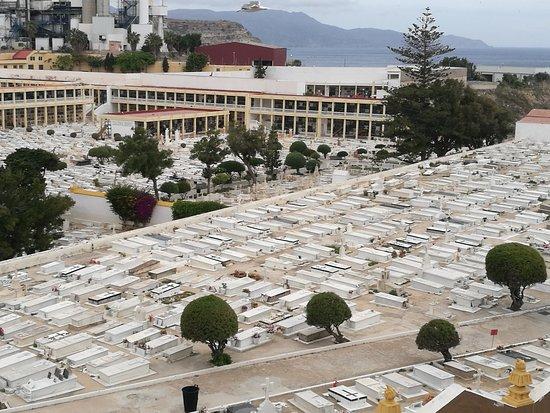 Cementerio Municipal de la Purisima Concepcion : El cementerio.