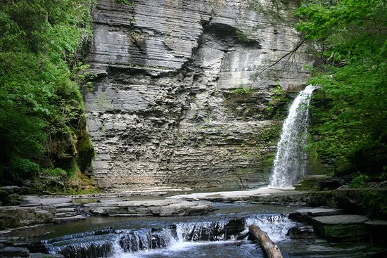 Eagle's Cliff Falls: Looking at the Eagle in the wall of Eagle Cliff Falls.