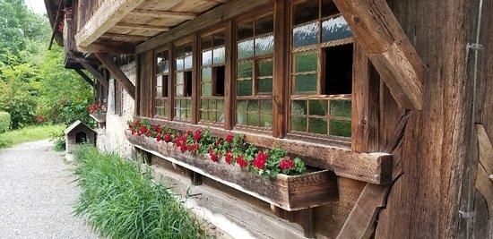 Black Forest Open Air Museum Vogtsbauernhof: 20180605_152538_large.jpg