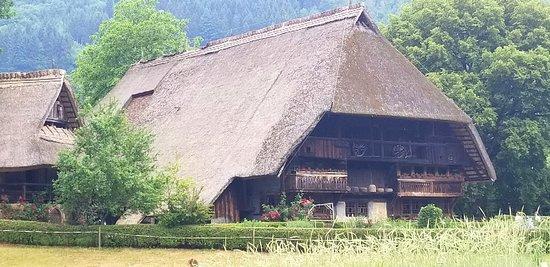 Black Forest Open Air Museum Vogtsbauernhof: 20180605_201603_large.jpg