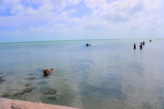 Wayne's World Bar & Grill: shallow water- calm and relaxing