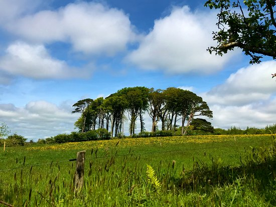 Muckross House, Gardens & Traditional Farms: Beginning of walk to 1st Farmhouse