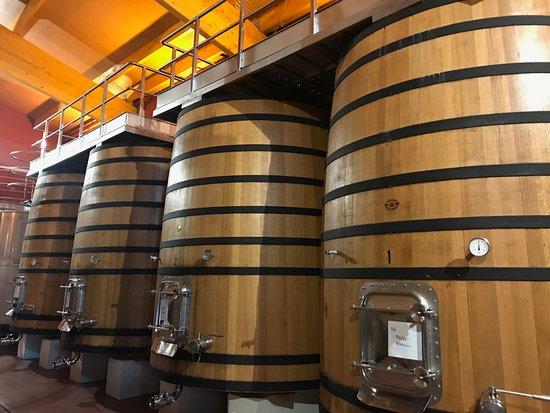 Finca Villacreces: Parte del recorrido del proceso del vino