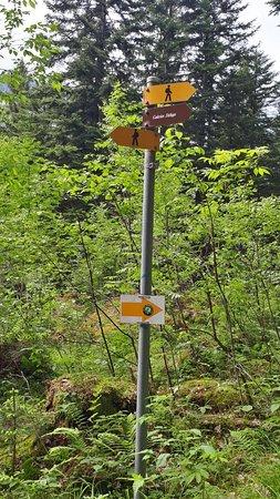 Champery, Ελβετία: Situado a localidade dd Champéry,  Aqui podemos ter varias ativadades de rappel. Paint ball e os