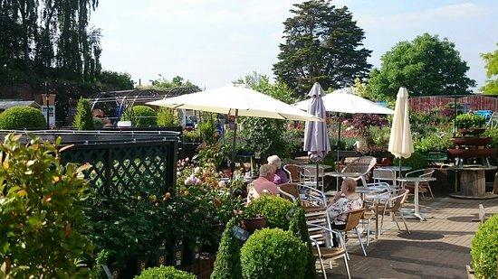 West Clandon, UK: Patio seating
