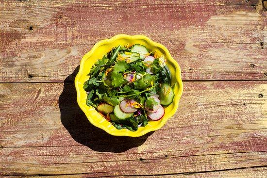 Al Campo: Green Medley Salad