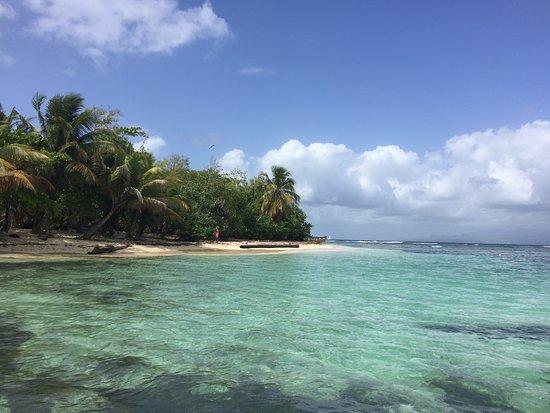 Tarzan Excursion Guadeloupe: îlet du Gosier