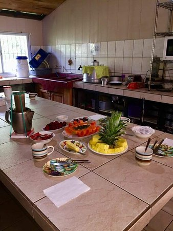 Sabanilla, Costa Rica: Cafe Aventura Hostel & Campamento