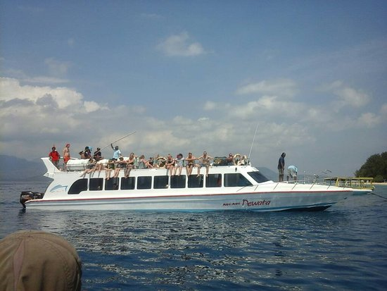 Mahi Mahi Dewata Fast Boat